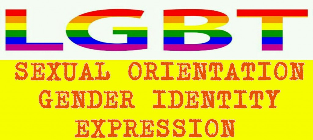 DISCUSSION: SEXUAL ORIENTATION, GENDER IDENTITY & EXPRESSION